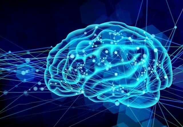 脳 メカニズム 依存症